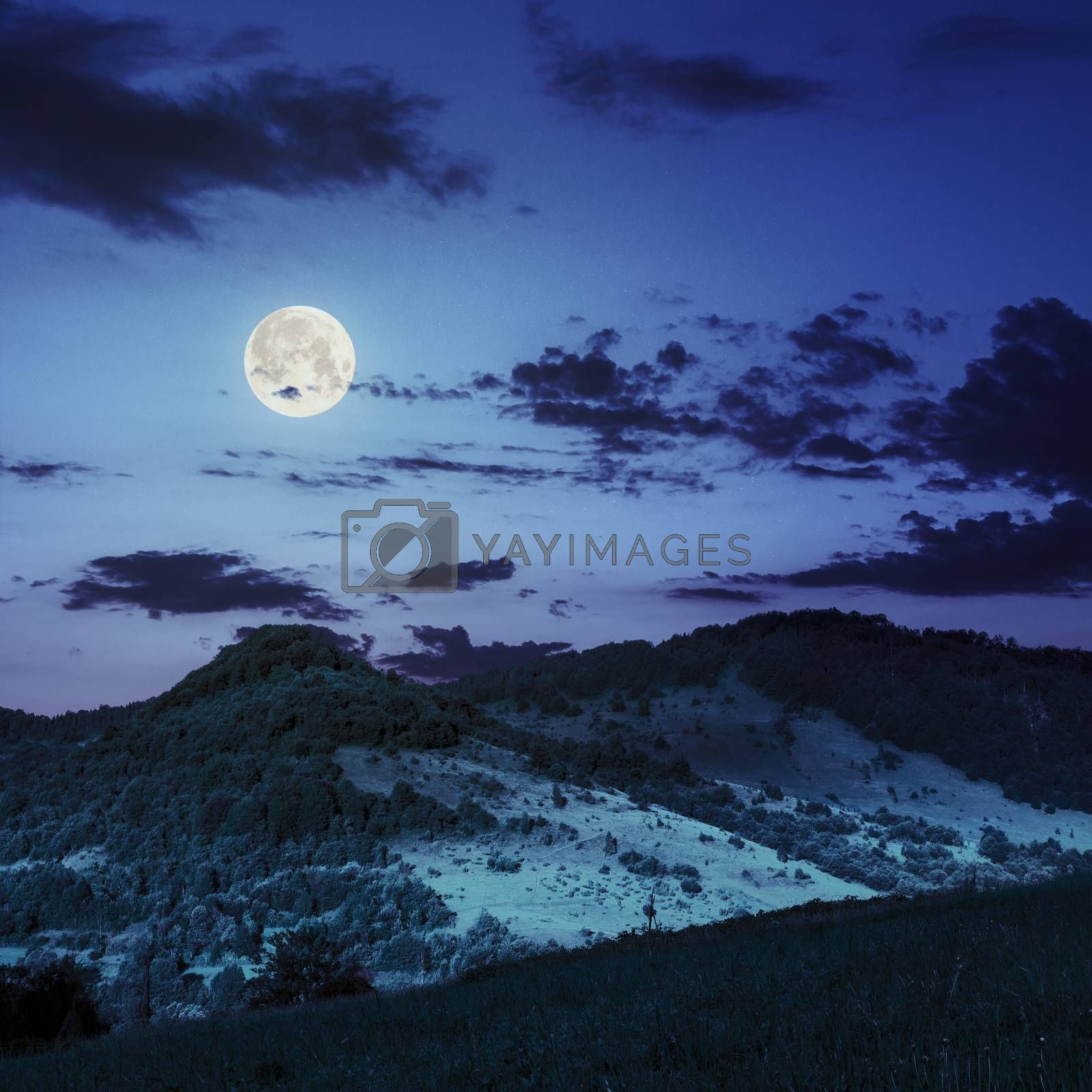 valleys on slopes in mountains at night by Pellinni