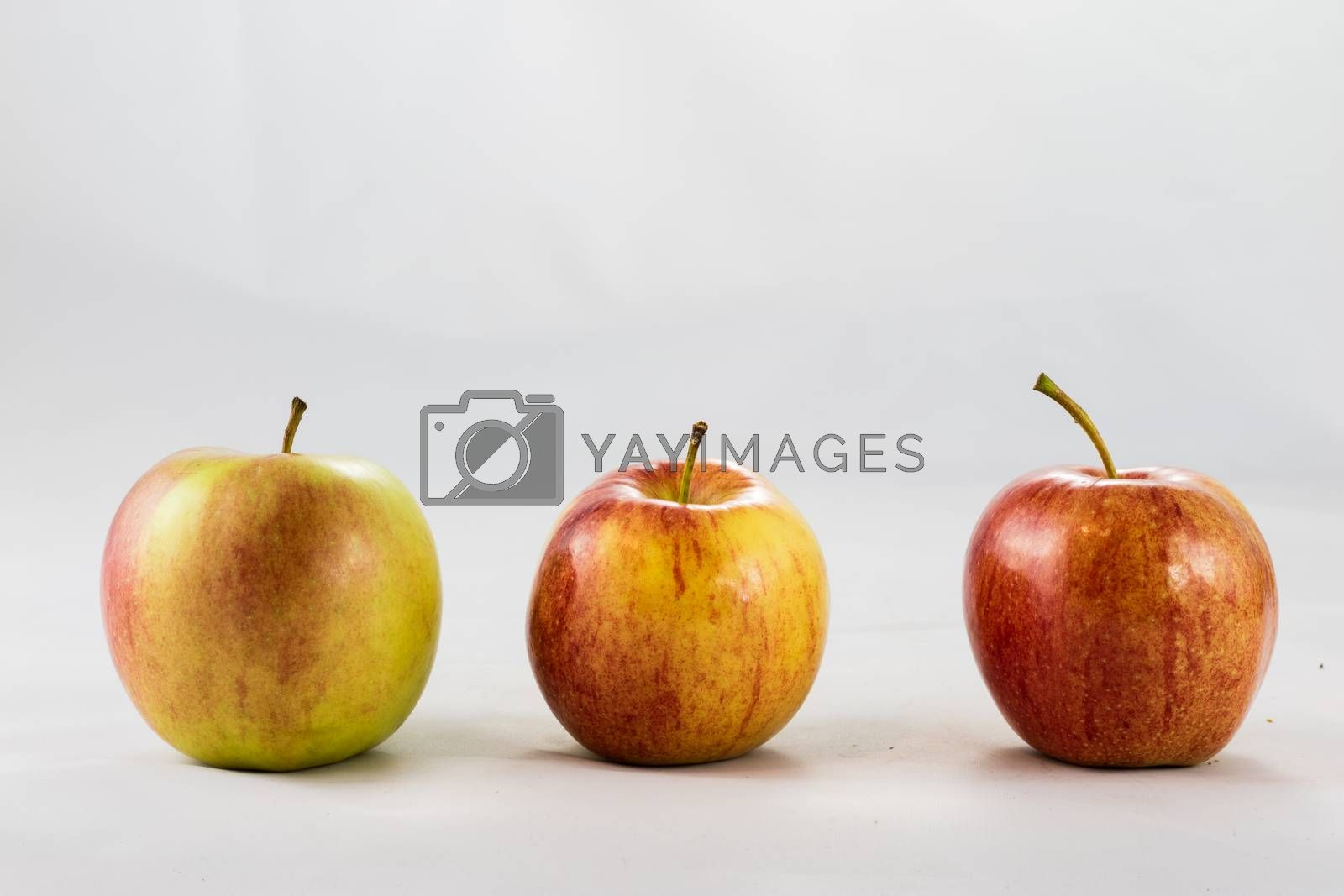 Tasty, delicious ripe apples on a white background by wytrazek