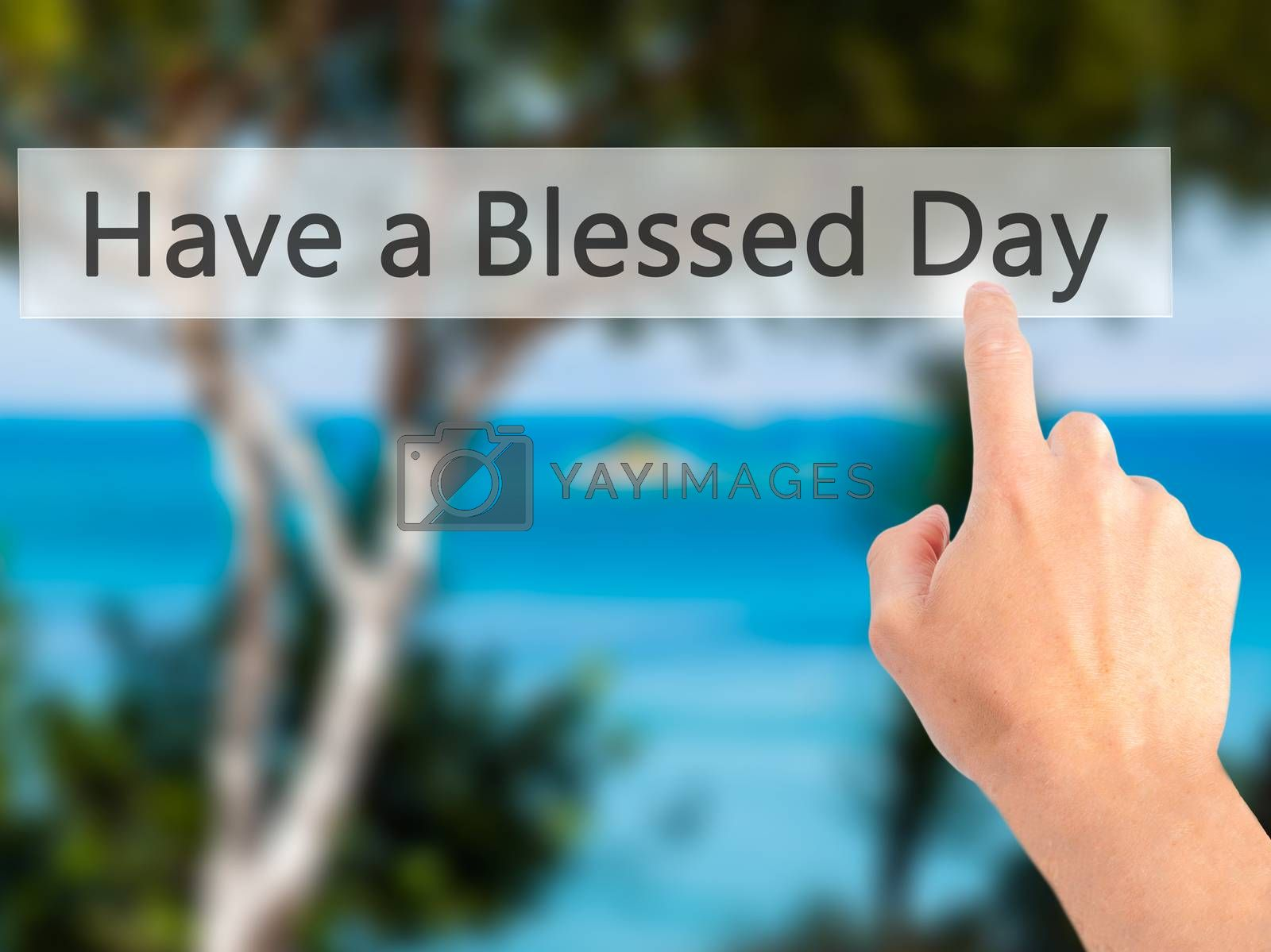 Have a Blessed Day - Hand pressing a button on blurred backgroun by jackald
