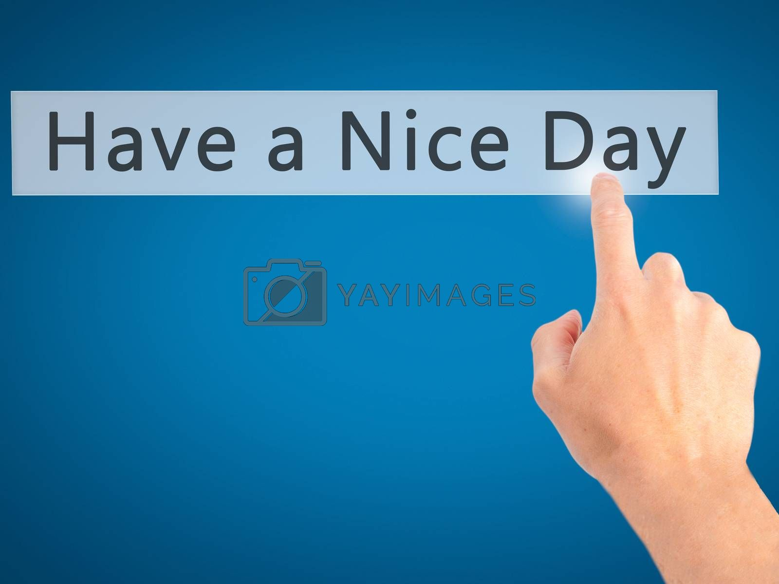 Have a Nice Day - Hand pressing a button on blurred background c by netsay.net
