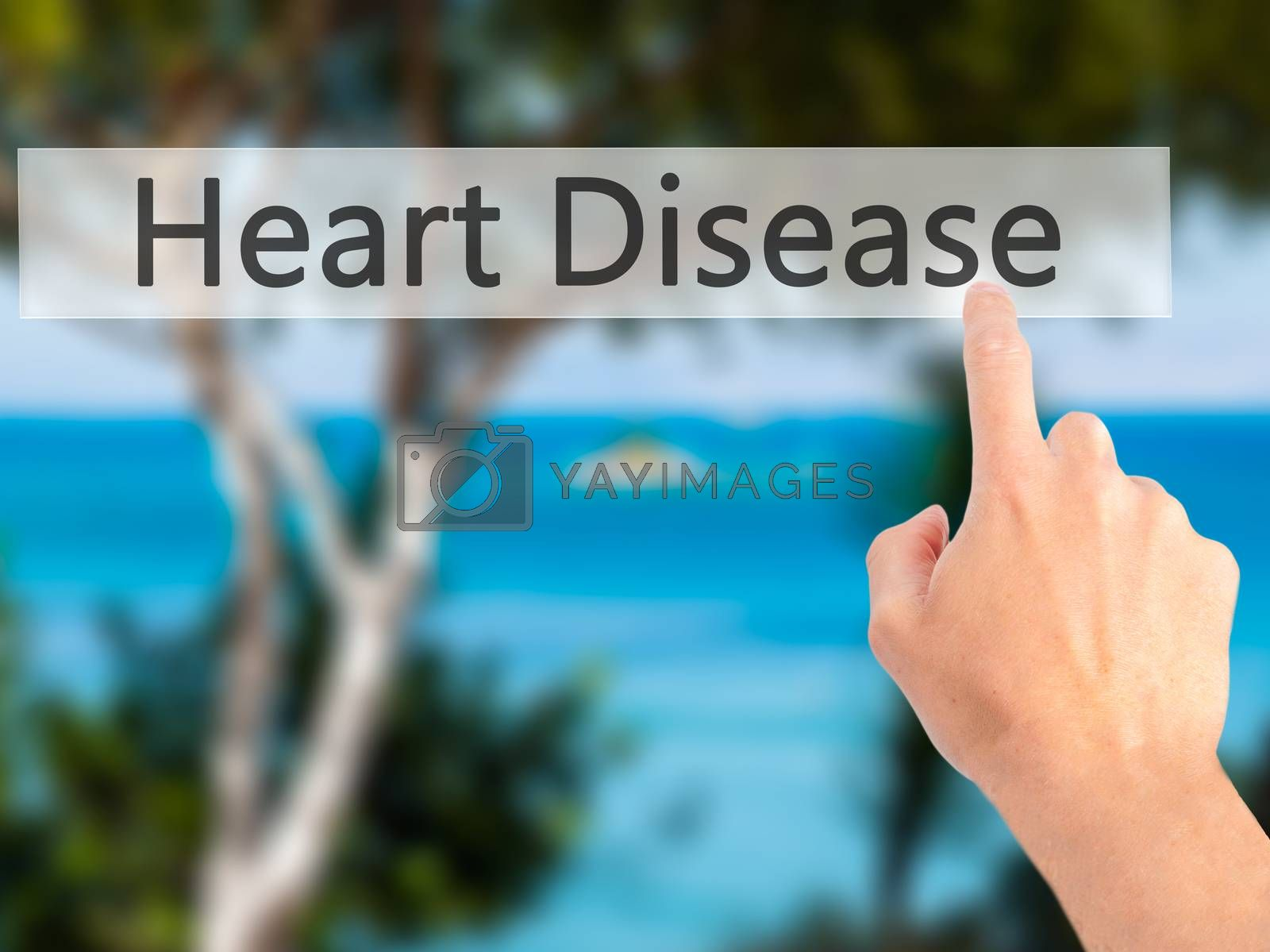 Heart Disease - Hand pressing a button on blurred background con by netsay.net
