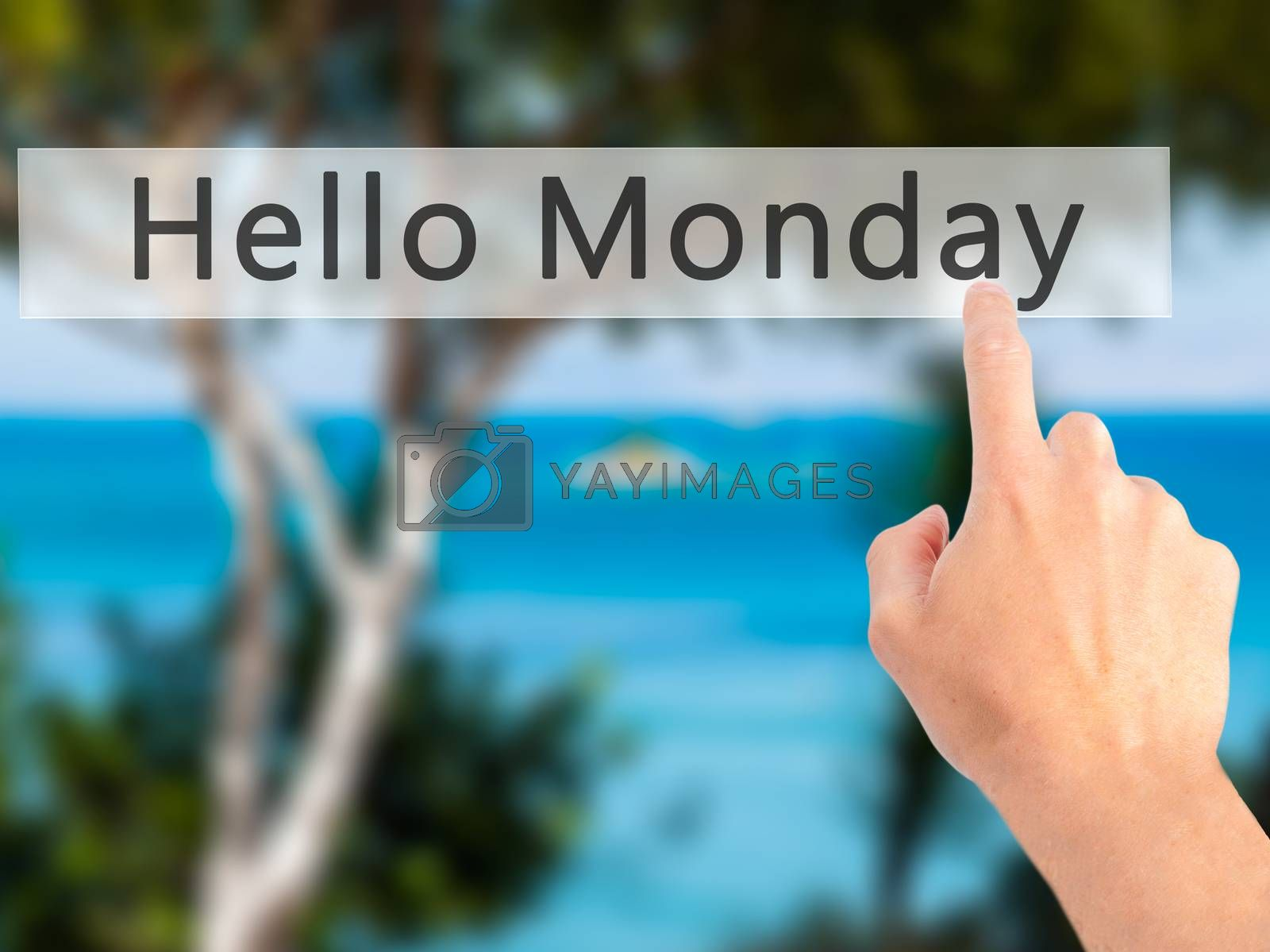 Hello Monday - Hand pressing a button on blurred background conc by netsay.net