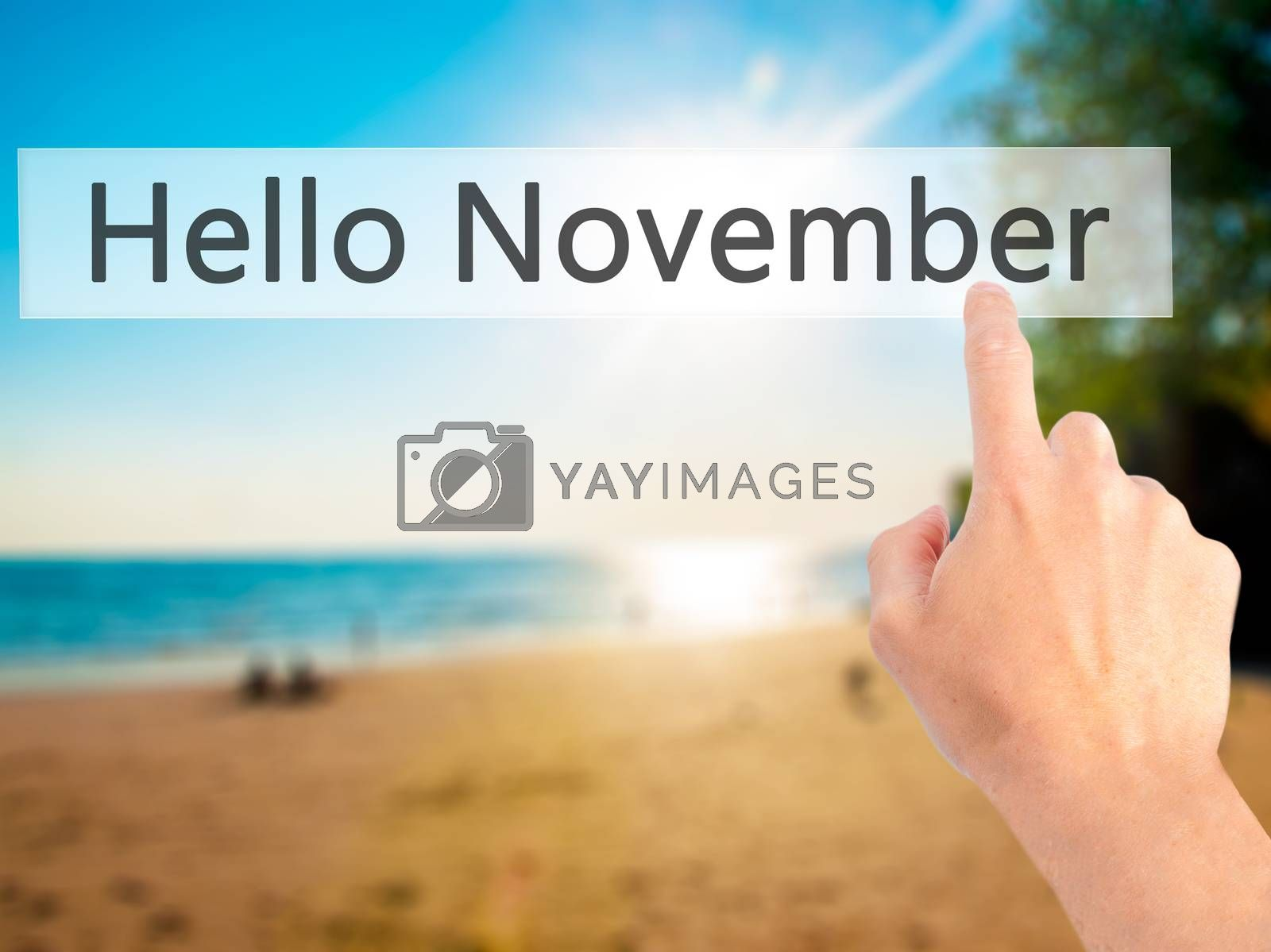 Hello November  - Hand pressing a button on blurred background c by netsay.net