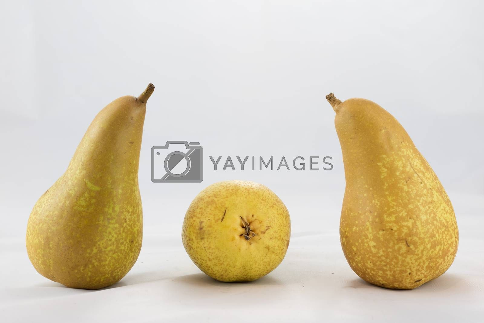 Delicious, delicious ripe apples and pears on a white background by wytrazek