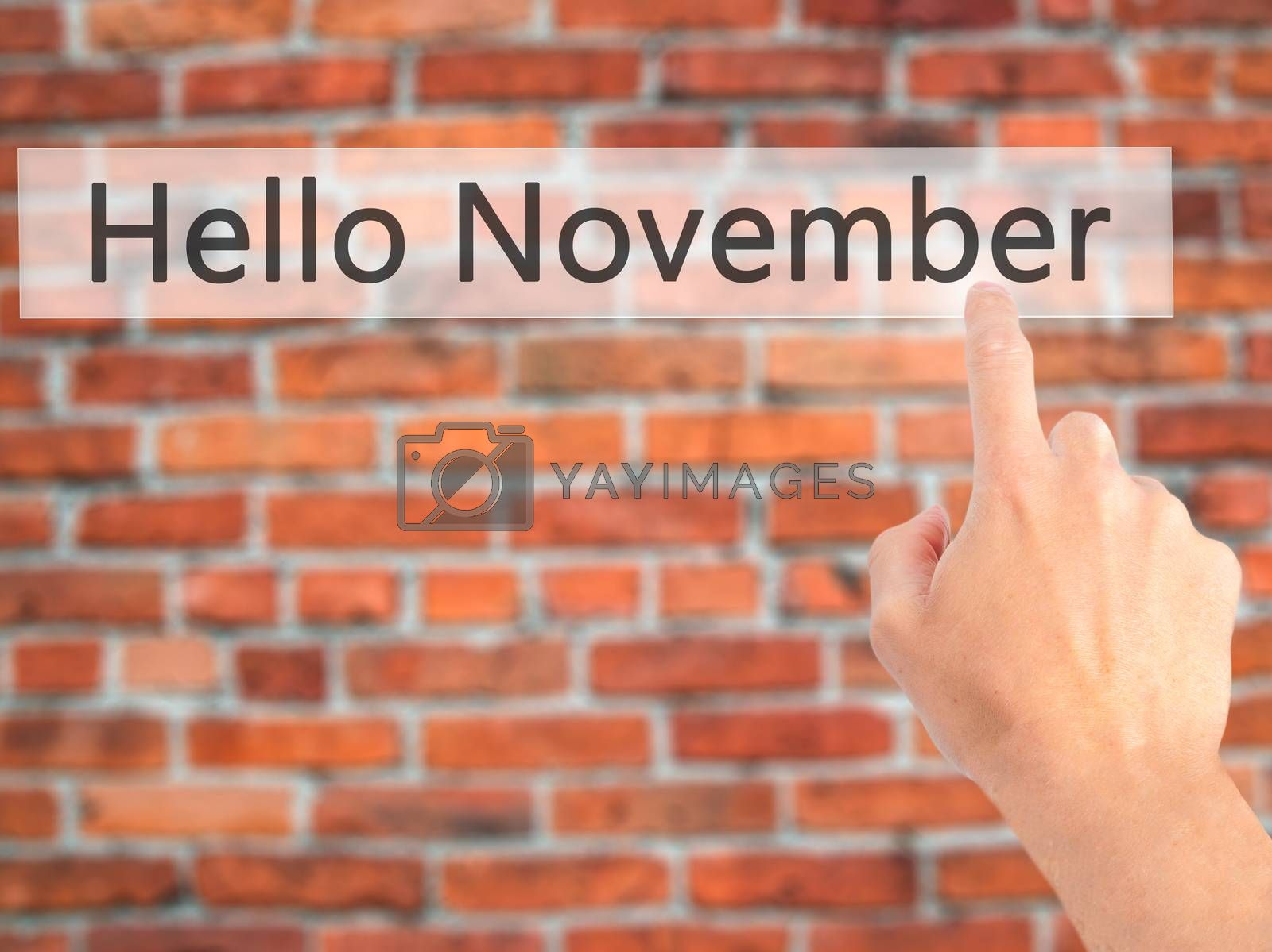 Hello November  - Hand pressing a button on blurred background c by jackald