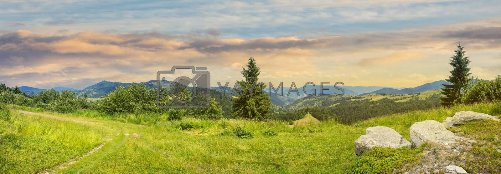pnoramic collage  landscape. boulders on the meadow with path on the hillside and two pine trees on top of mountain range at sunrise
