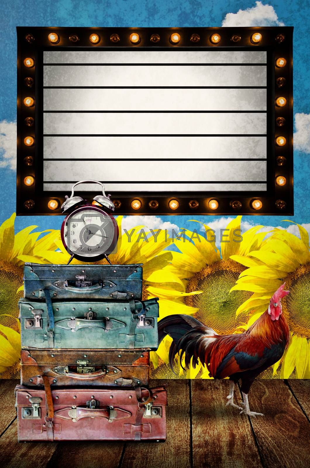 Vintage Light box program board with retro bag and chicken at sunflower farm