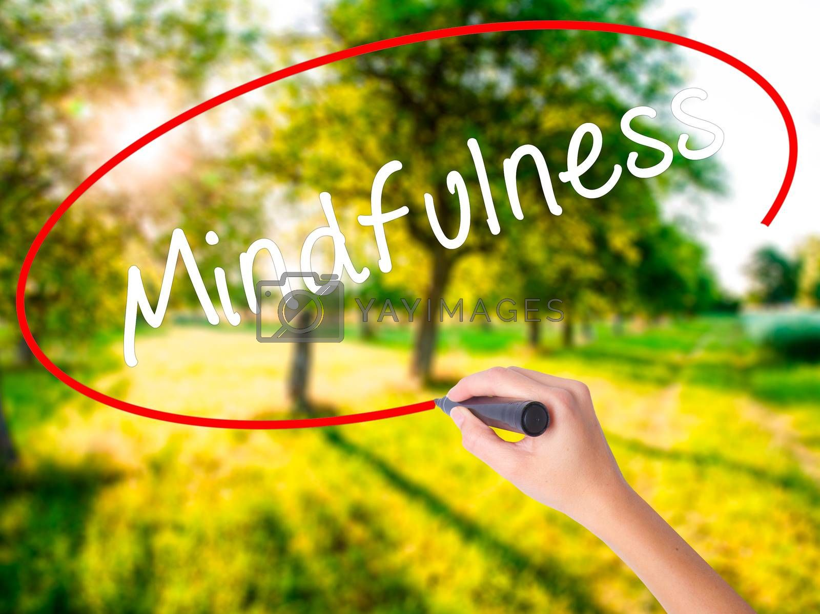 Woman Hand Writing Mindfulness  on blank transparent board with a marker isolated over green field background. Business concept. Stock Photo