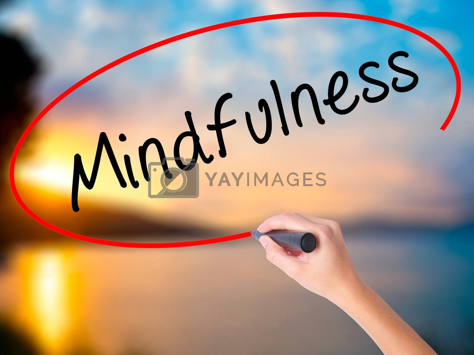 Women Hand writing Mindfulness  with black marker on visual screen. Isolated on Sunset. Business, technology, internet concept. Stock Image