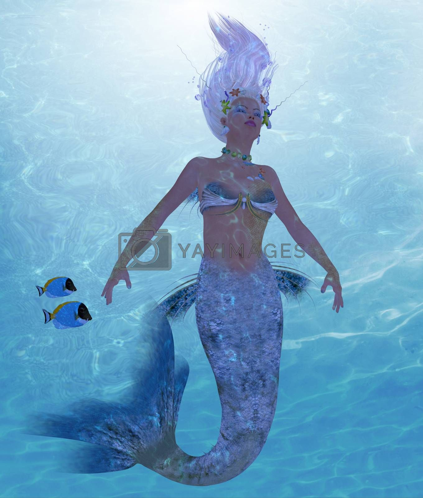 A mermaid is a fantasy creature from folklore and myth that has a fish tail and a woman's upper body.