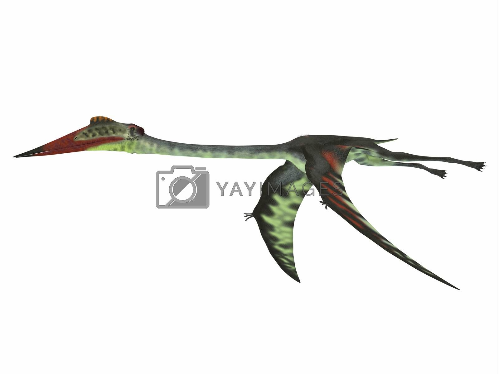 Quetzalcoatlus was a carnivorous pterosaur reptile that lived in the Cretaceous Period of North America.