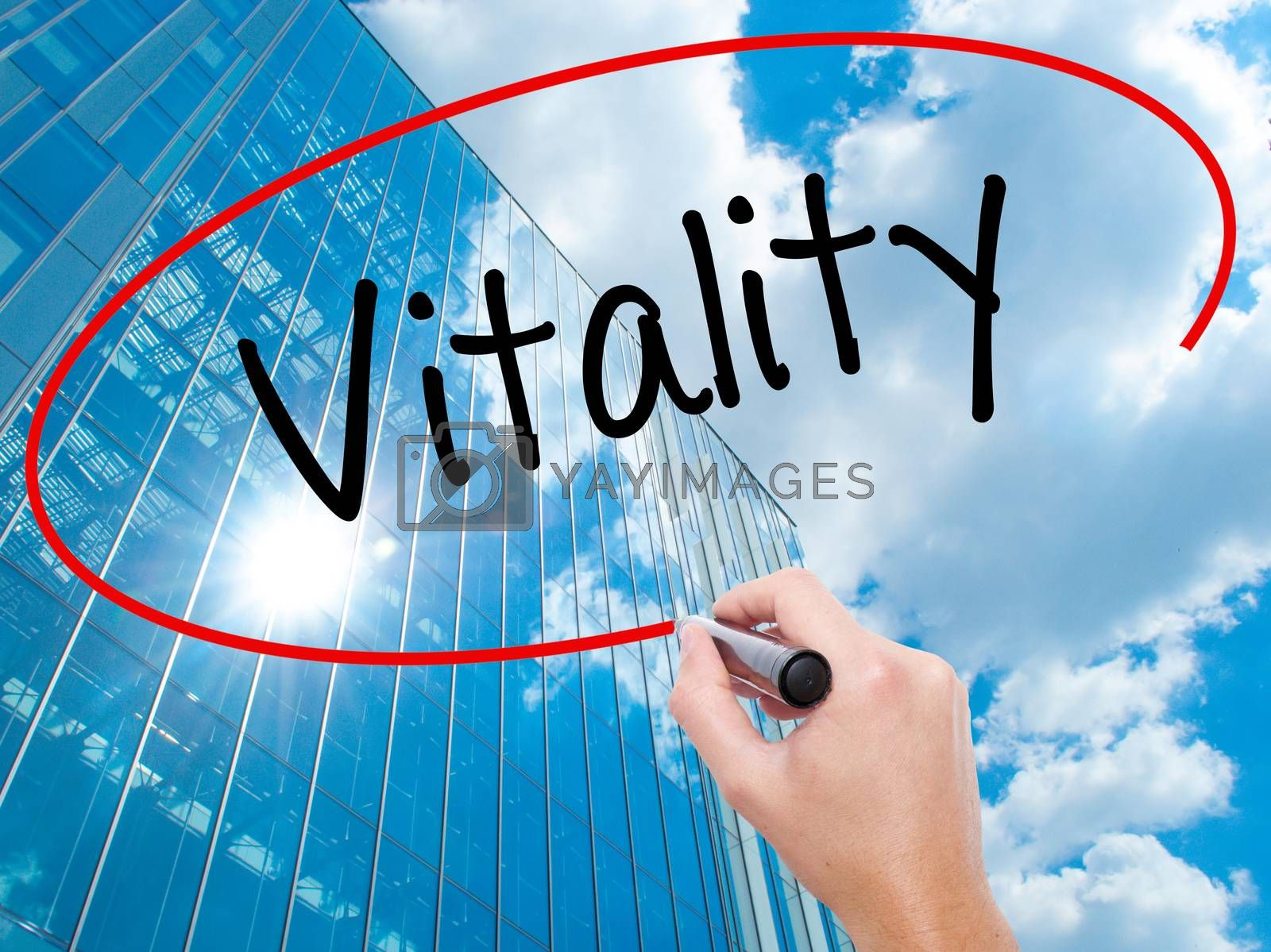 Man Hand writing Vitality  with black marker on visual screen.  Business, technology, internet concept. Modern business skyscrapers background. Stock Photo