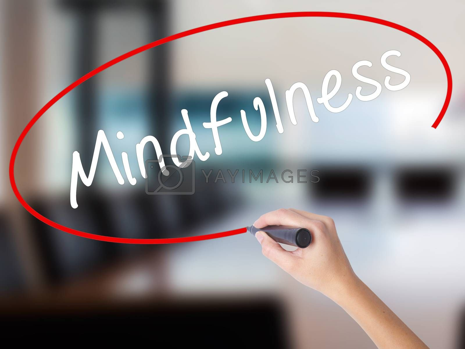 Woman Hand Writing Mindfulness  with a marker over transparent board. Isolated on Office. Business concept. Stock Image