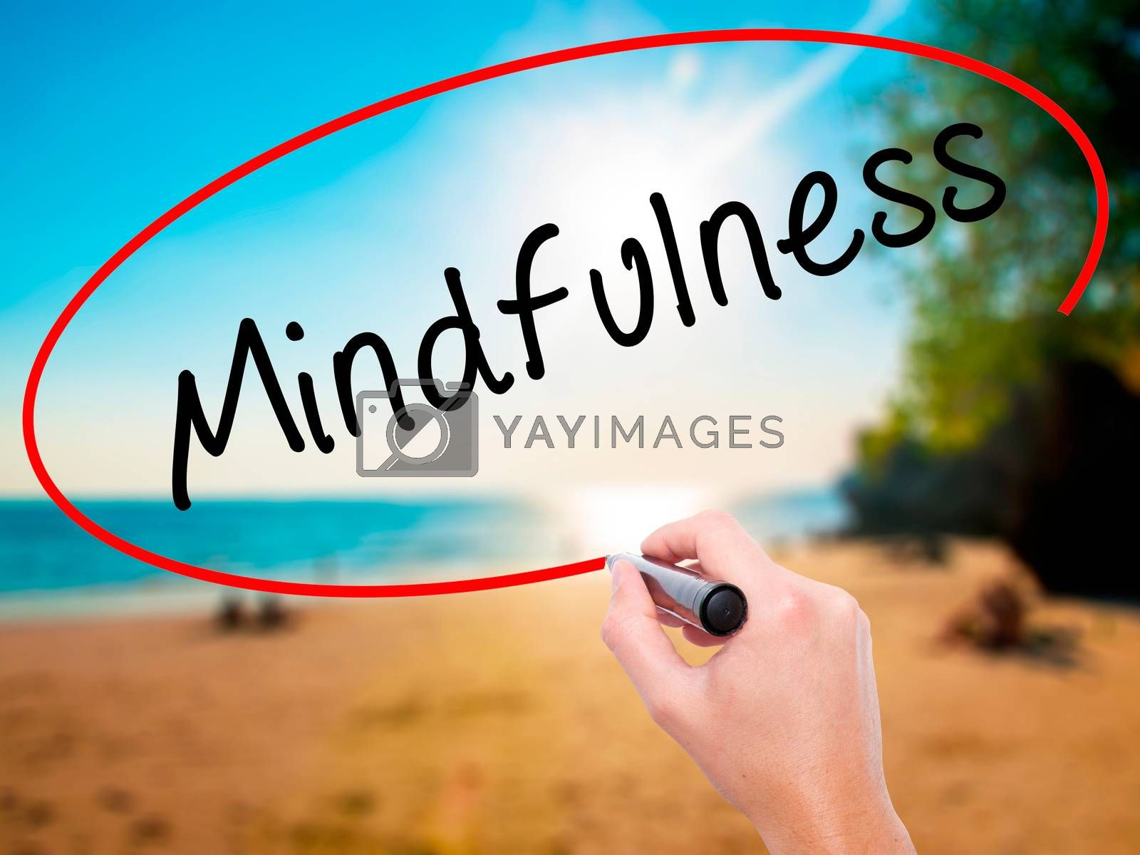 Man Hand writing Mindfulness  with black marker on visual screen. Isolated on white. Business, technology, internet concept. Stock Image
