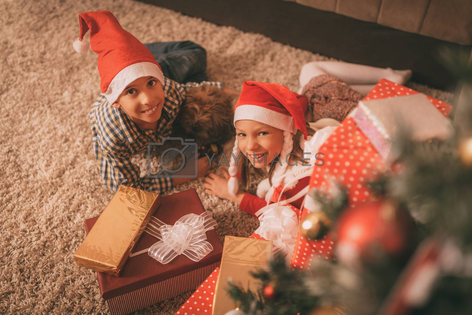Cute smiling girl, boy and their small dog with many presents at the home in a Christmas time. Looking at camera.