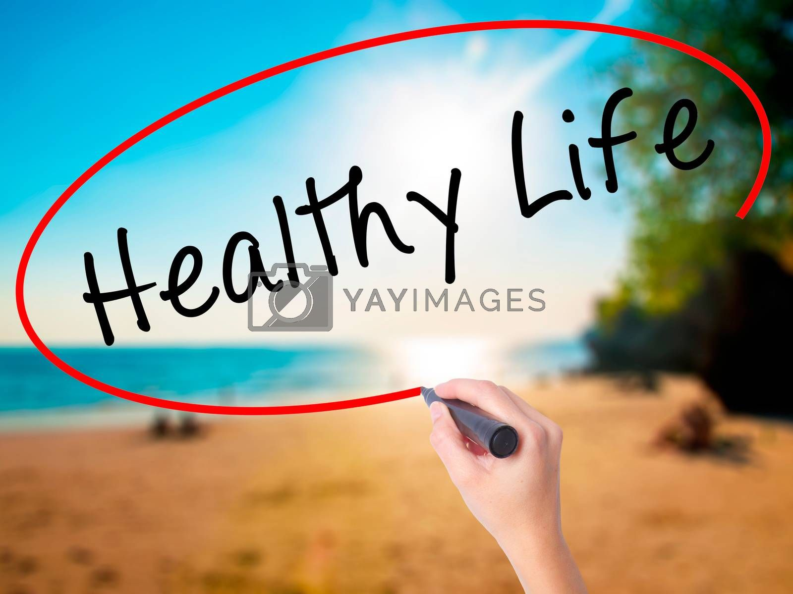 Women Hand writing Healthy Life black marker on visual screen. Isolated on beach. Life, technology, internet concept. Stock Image