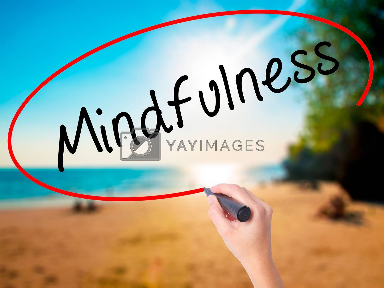 Women Hand writing Mindfulness  with black marker on visual screen. Isolated on beach. Business, technology, internet concept. Stock Image