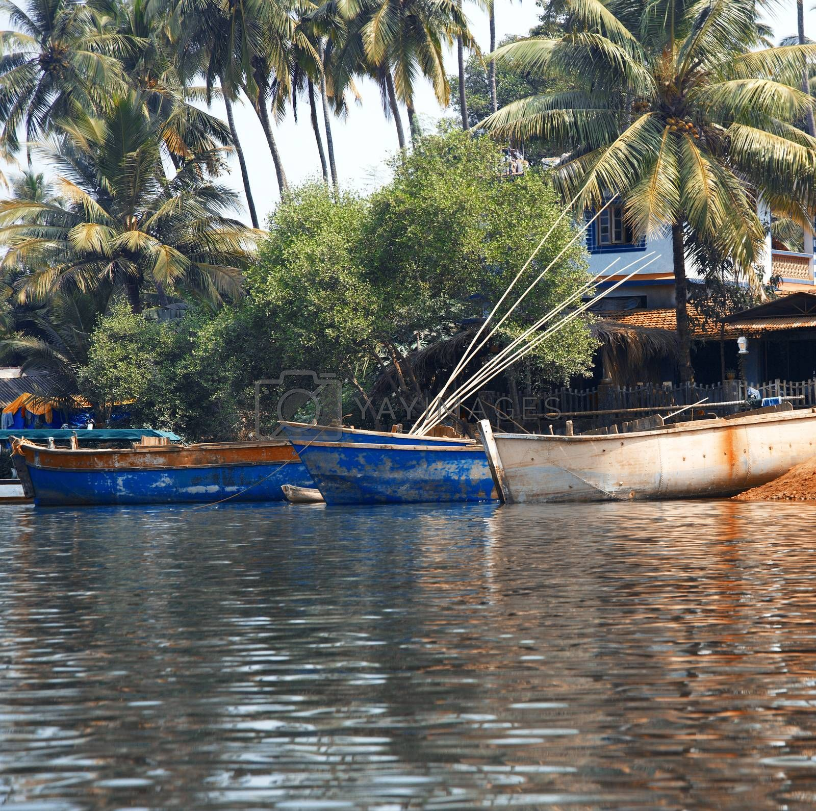 Fishing boats at the pier in palm jungles. Goa, India