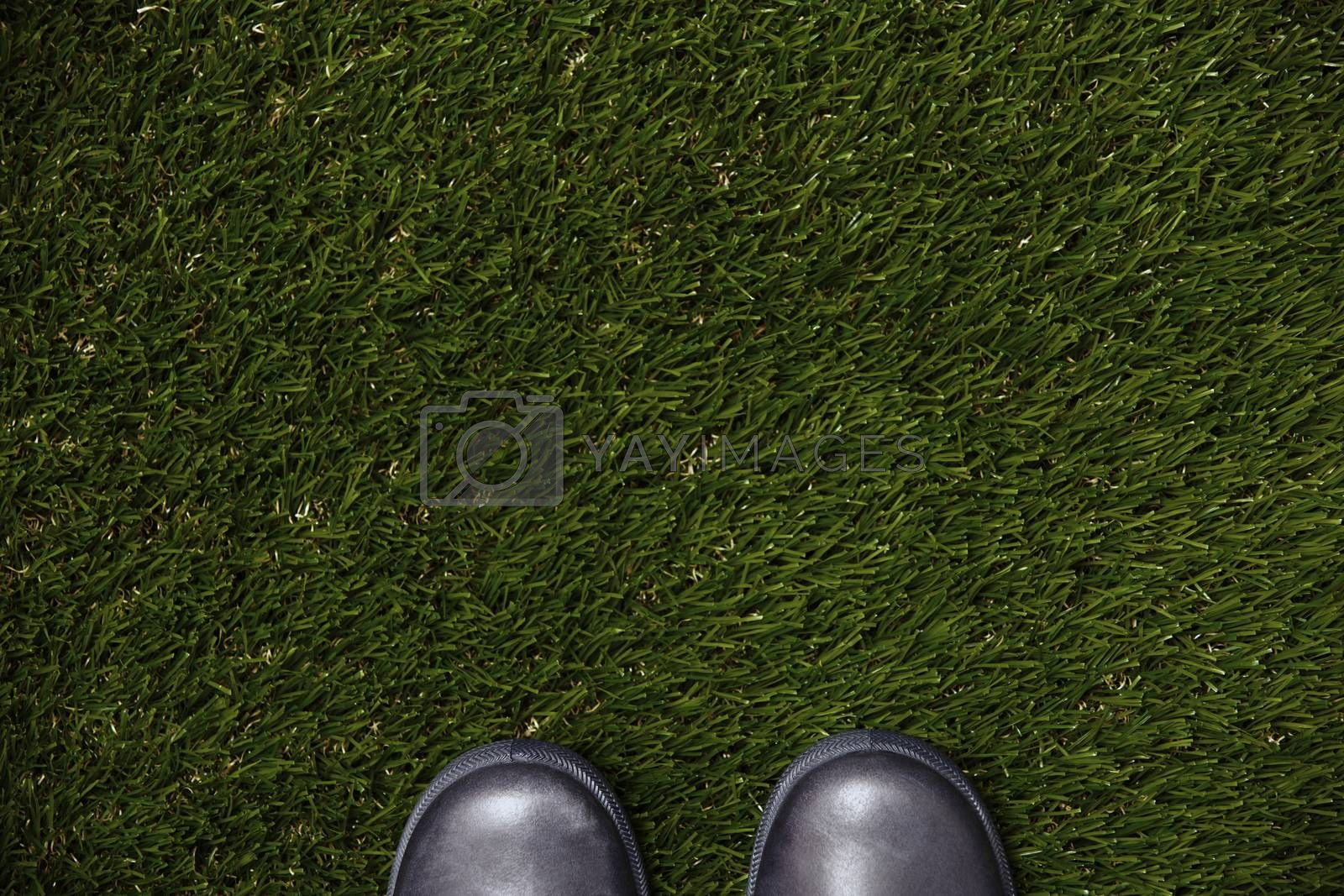 View from above to the boots standing on a grass