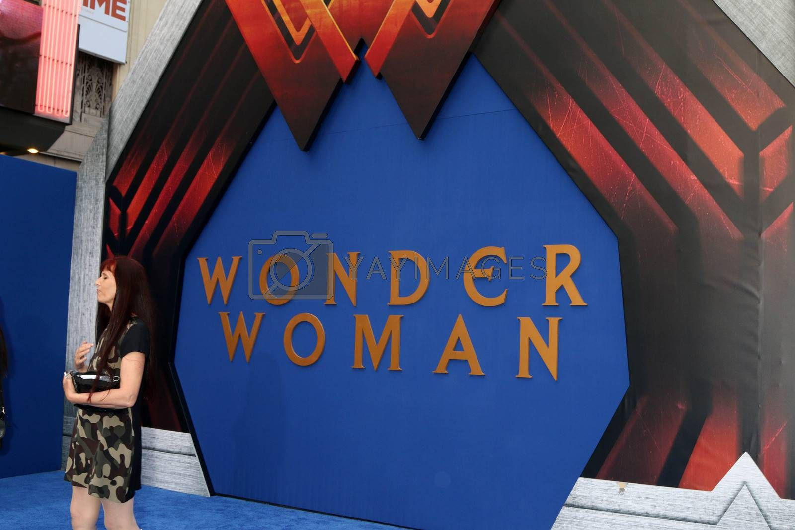 "Wonder Woman Atmosphere at the ""Wonder Woman"" Premiere, Pantages, Hollywood, CA 05-25-17"