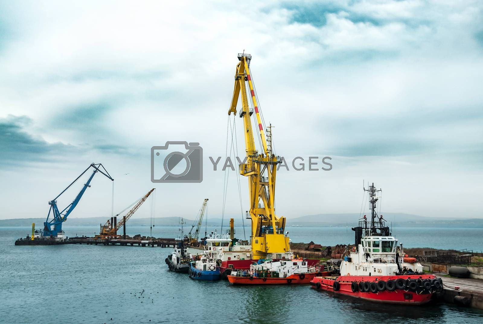 Floating cranes on the construction of the bridge