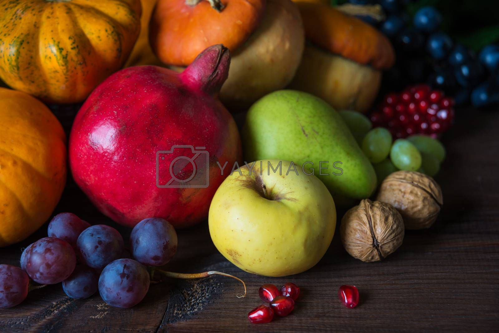 Rich harvest of various fruits and vegetables: decorative pumpkins, squash, apples, pears, pomegranates and grapes on the dark wooden background