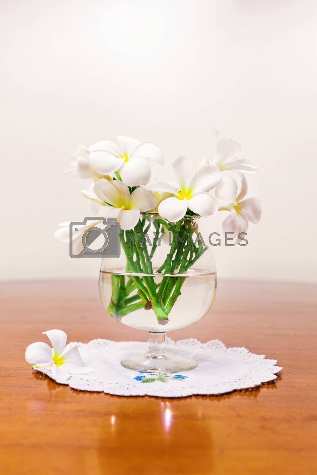 Still life with white spring summer flowers .