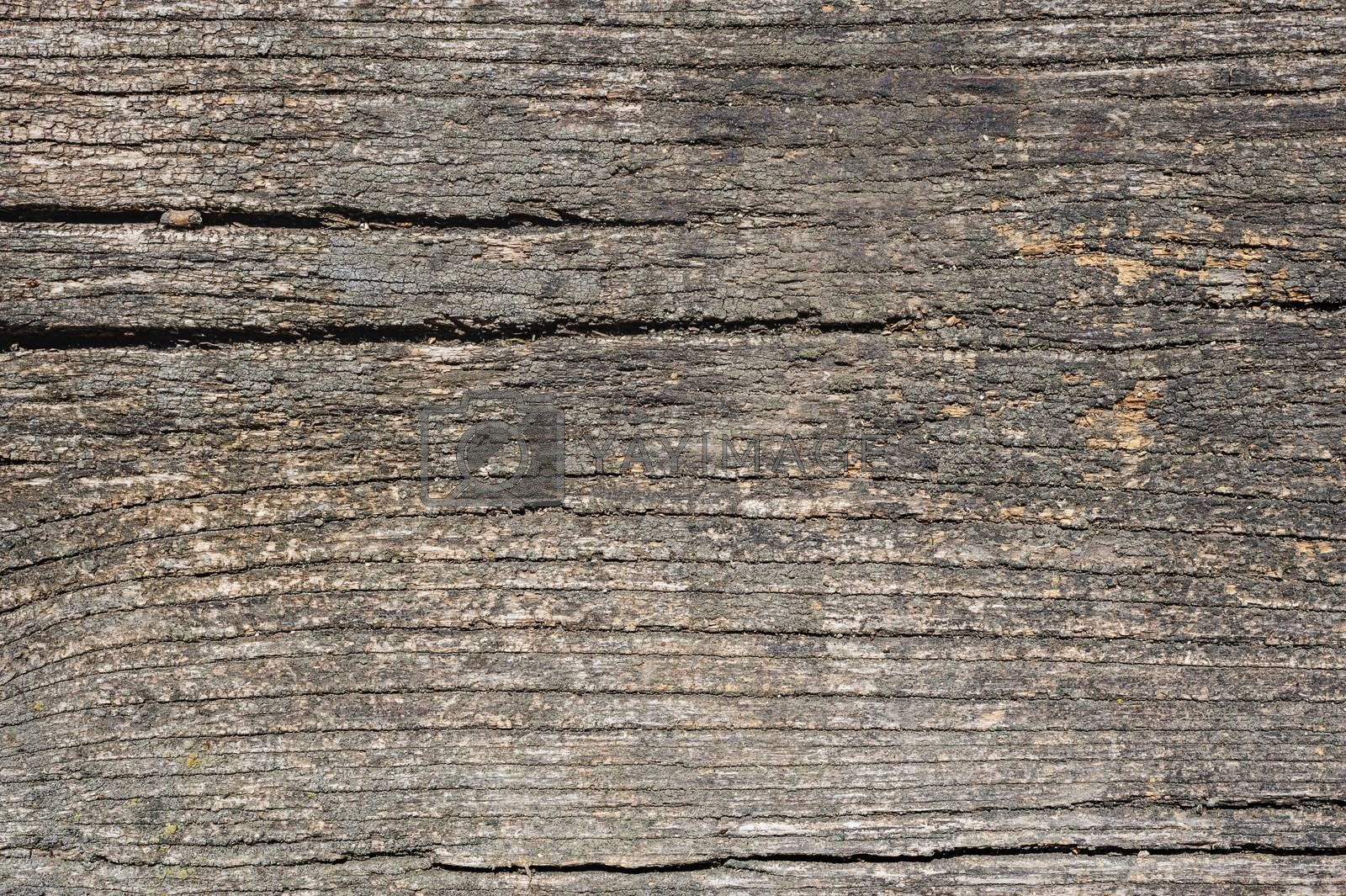 Old aged dirty cracked wood planks, texture with natural organic pattern