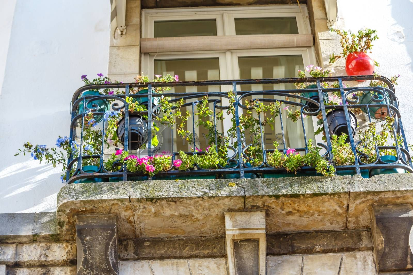 Royalty free image of Old Romantic Balcony with plants and flower by pixinoo