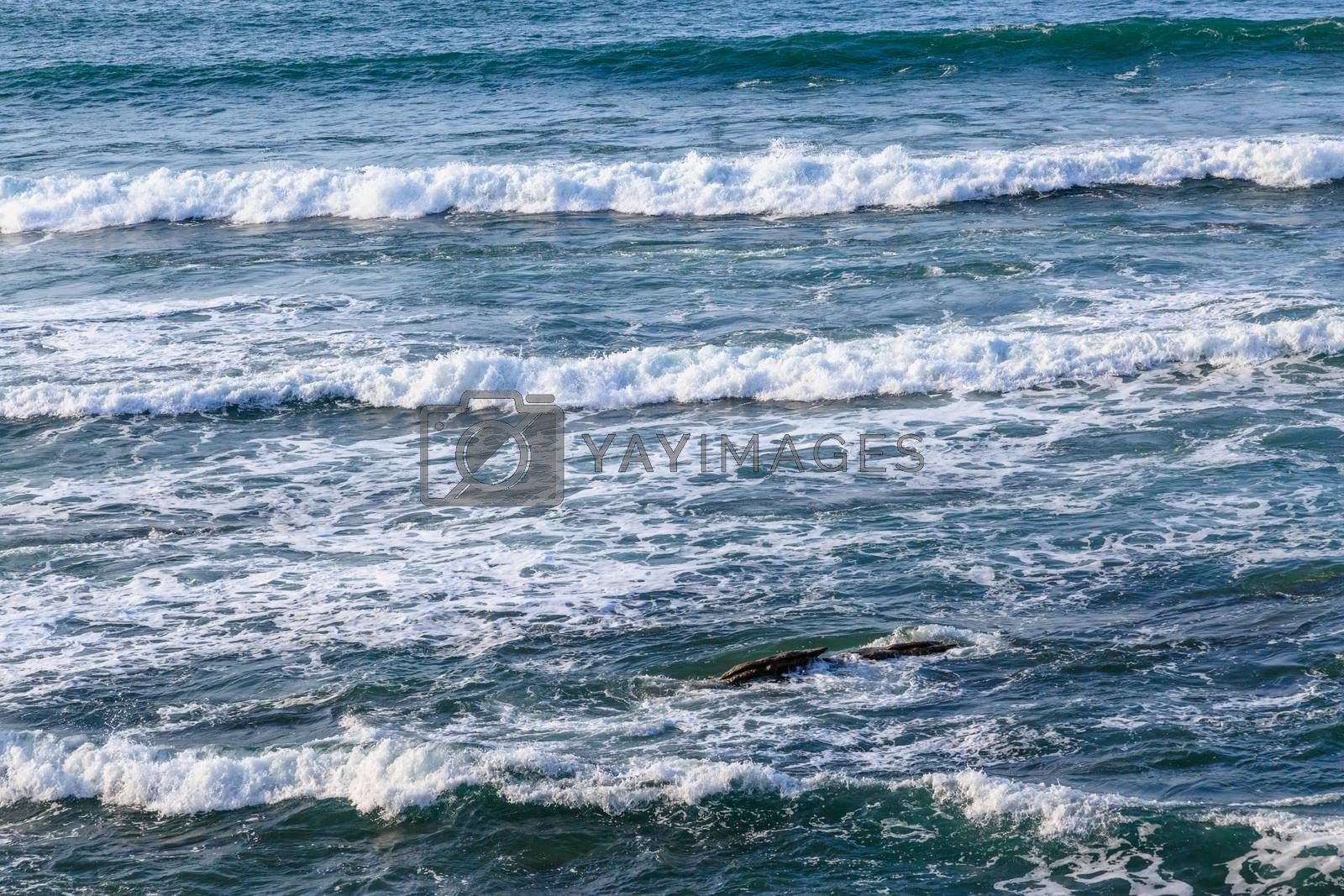 Royalty free image of Seascape with rocks, foam and spray of the waves by pixinoo