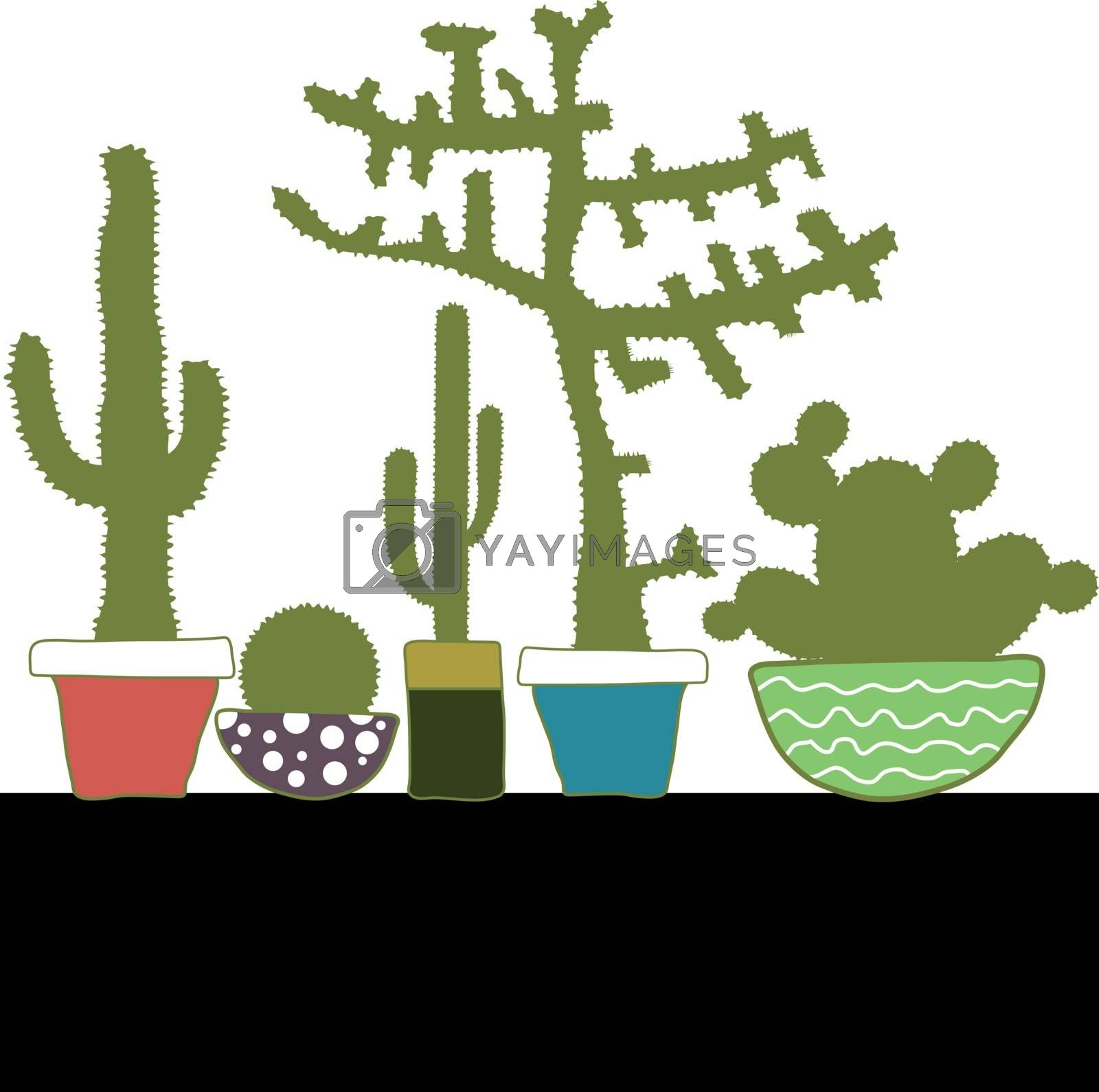 Colorful set with cactus in pots on white background
