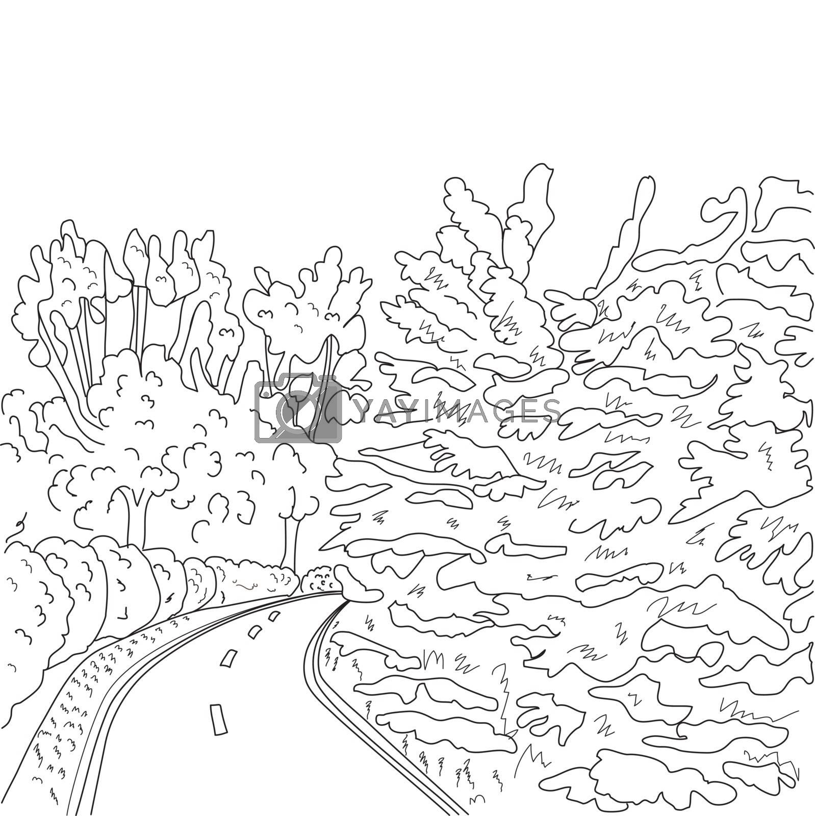 vector park road and trees graphic black and white landscape sketch illustration