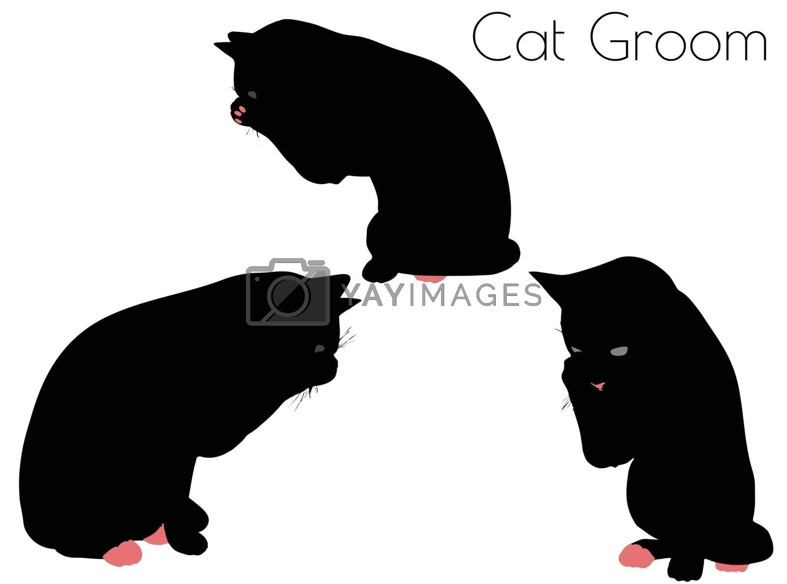 EPS 10 vector illustration of cat silhouette in Groom Pose