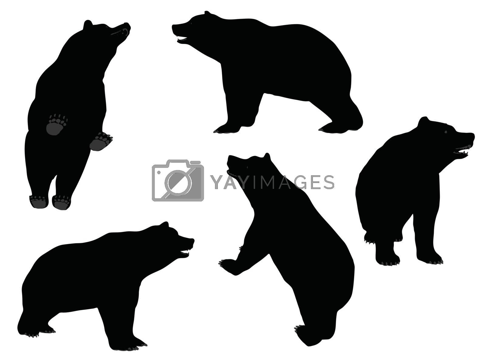 EPS 10 vector illustration of Bear silhouette