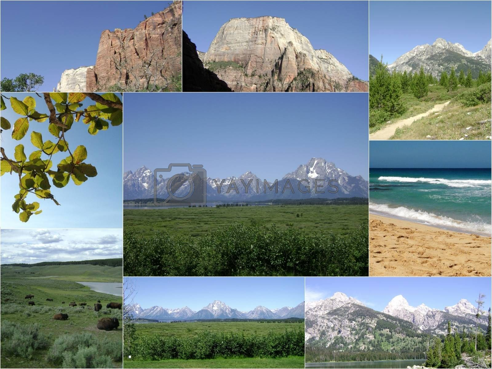 Scenic Rocky Mountains Outdoors Collage.Jpg