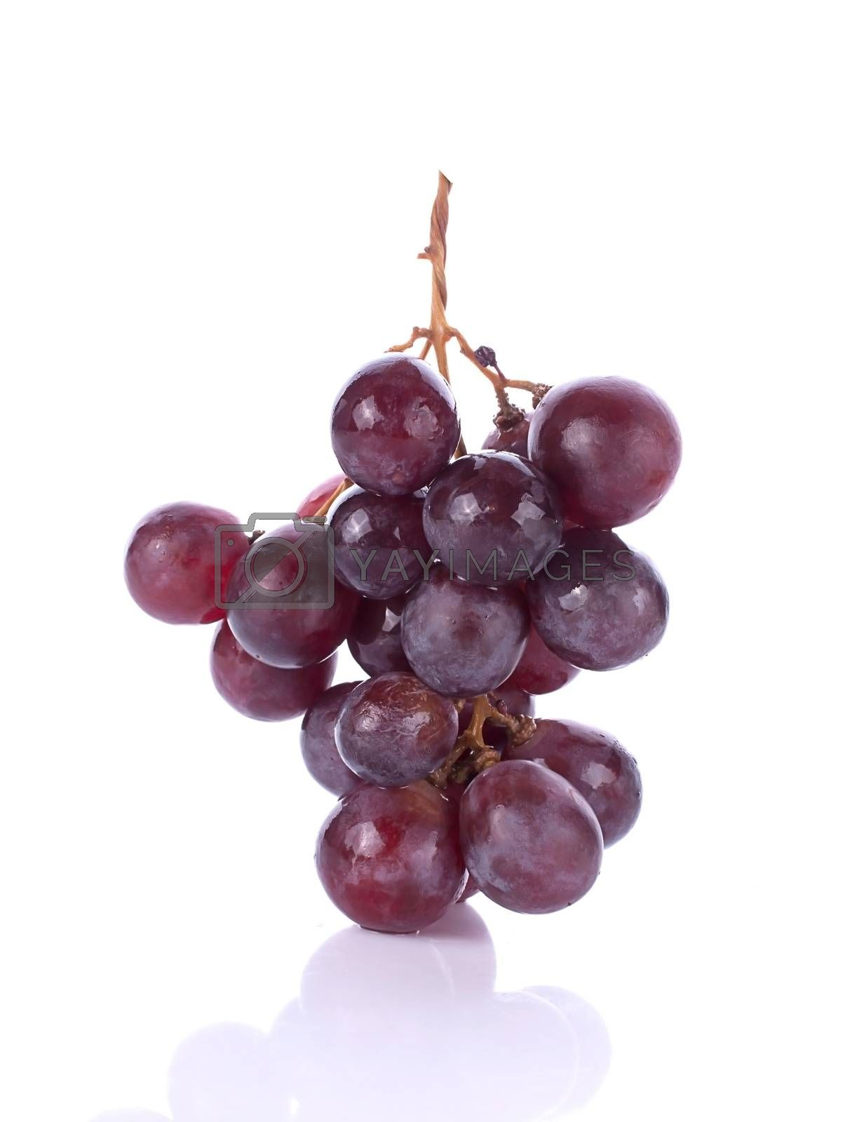 grape berry close up background