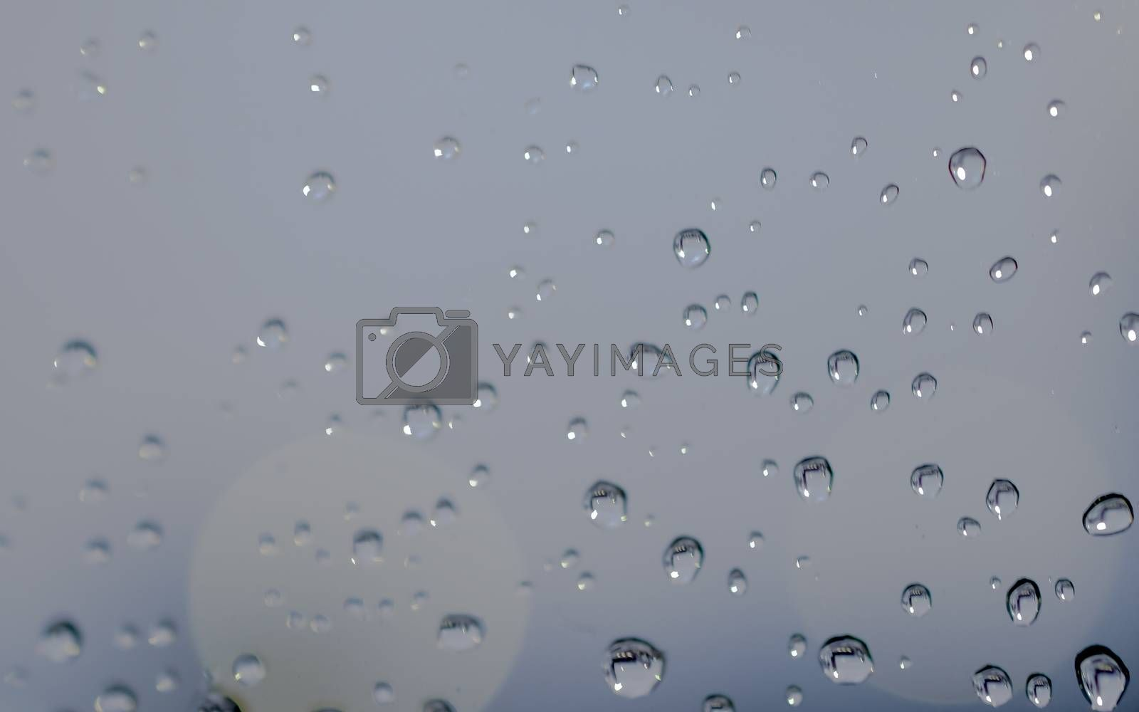 water drops close up on glass.