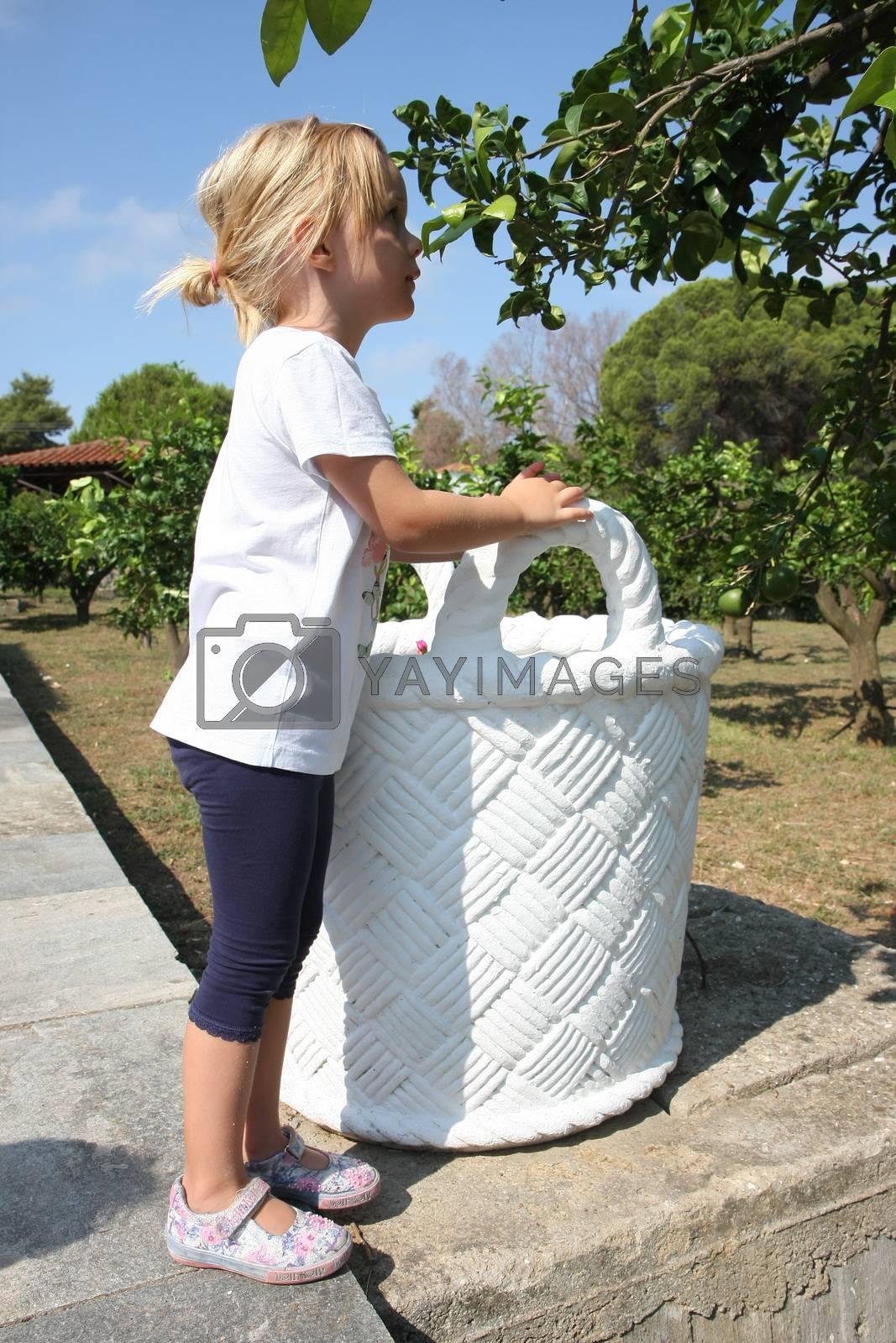 Baby girl posing near big flower box