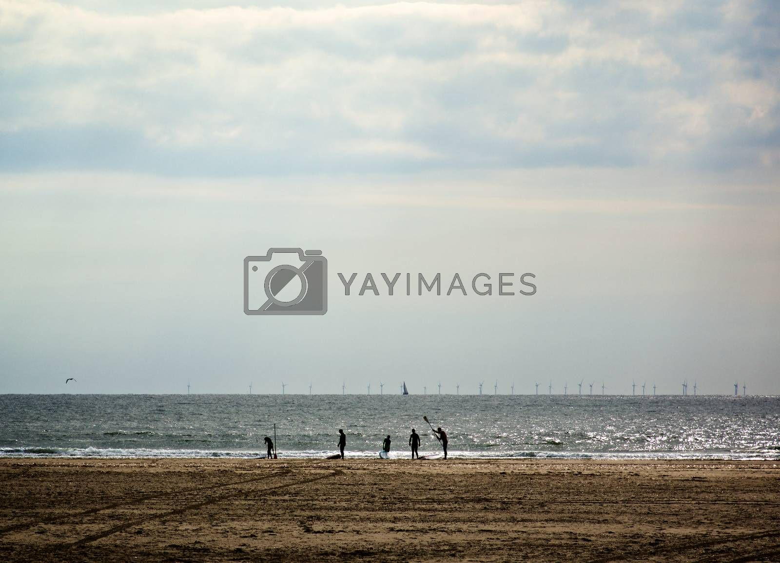 Surfers in Diving Suit Standing on Beach against Sun and Horizon  Outdoors