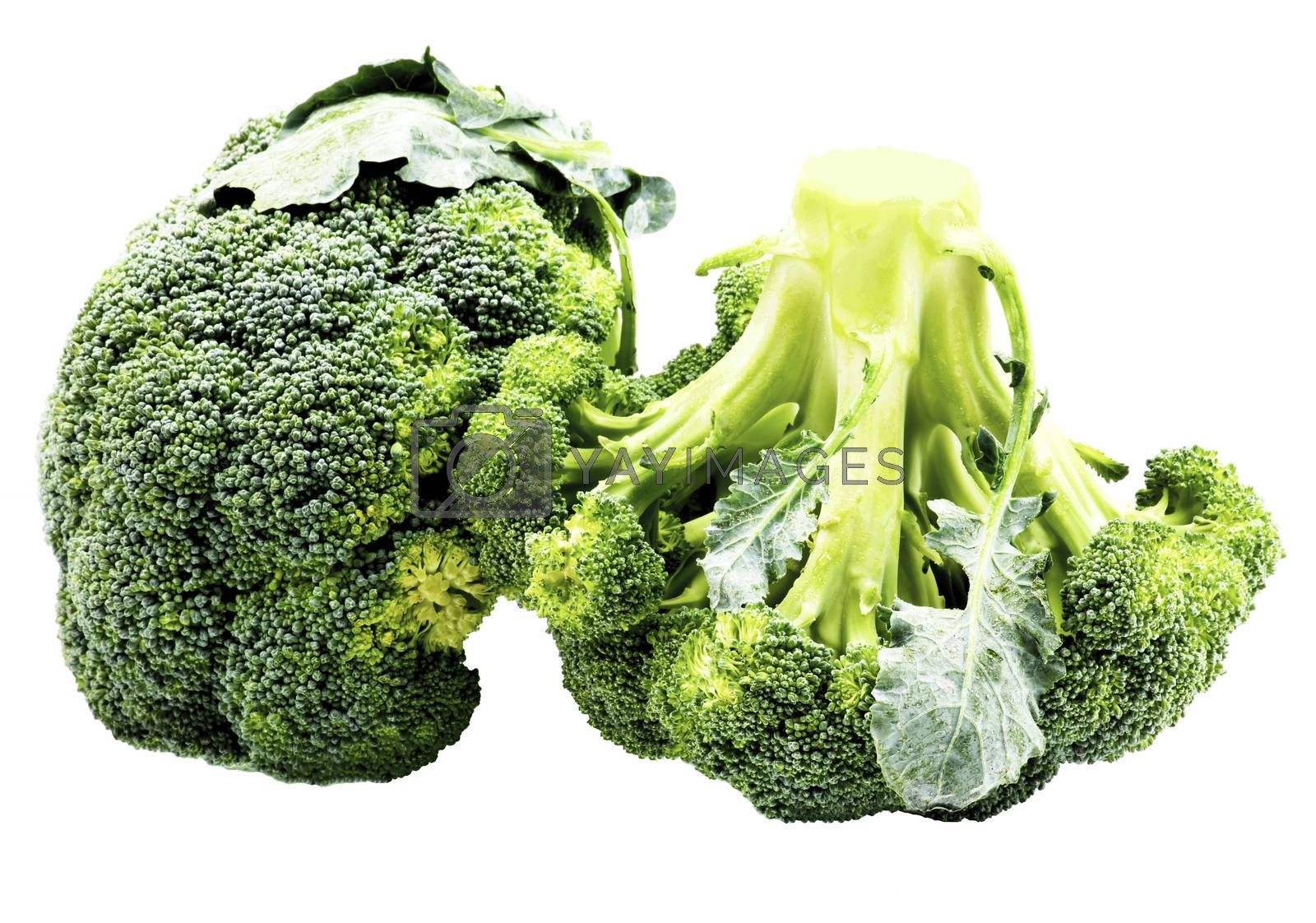 Two Ripe Raw Fresh Broccoli with Leafs isolated on White background