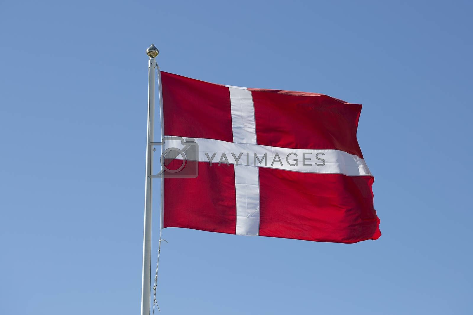 The Flag of Denmark Waving in the Wind by Emmoth
