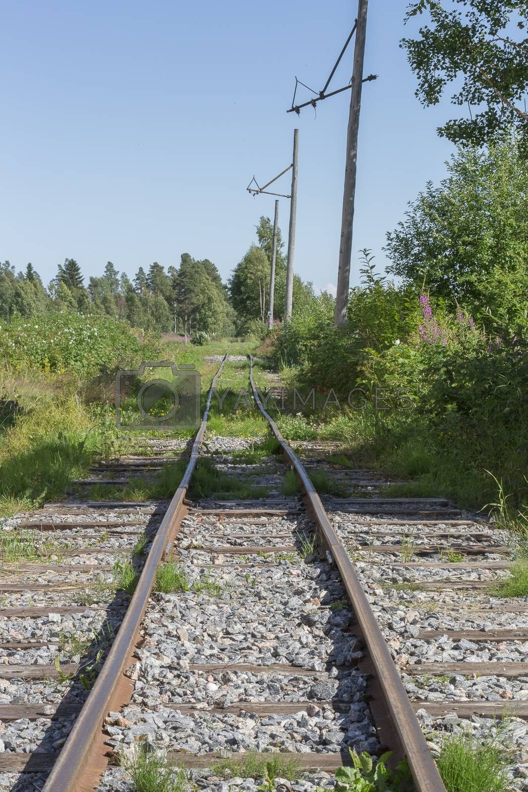 Old Railroad Tracks in nature. by Emmoth