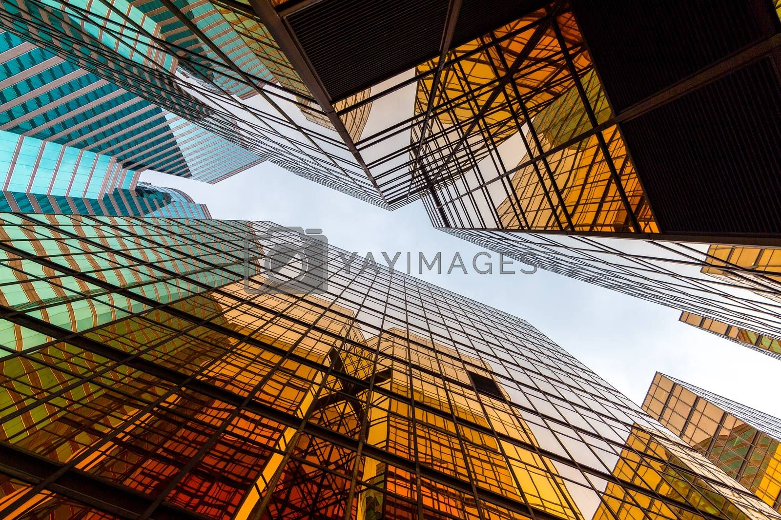 Royalty free image of Business building from low angle by leungchopan
