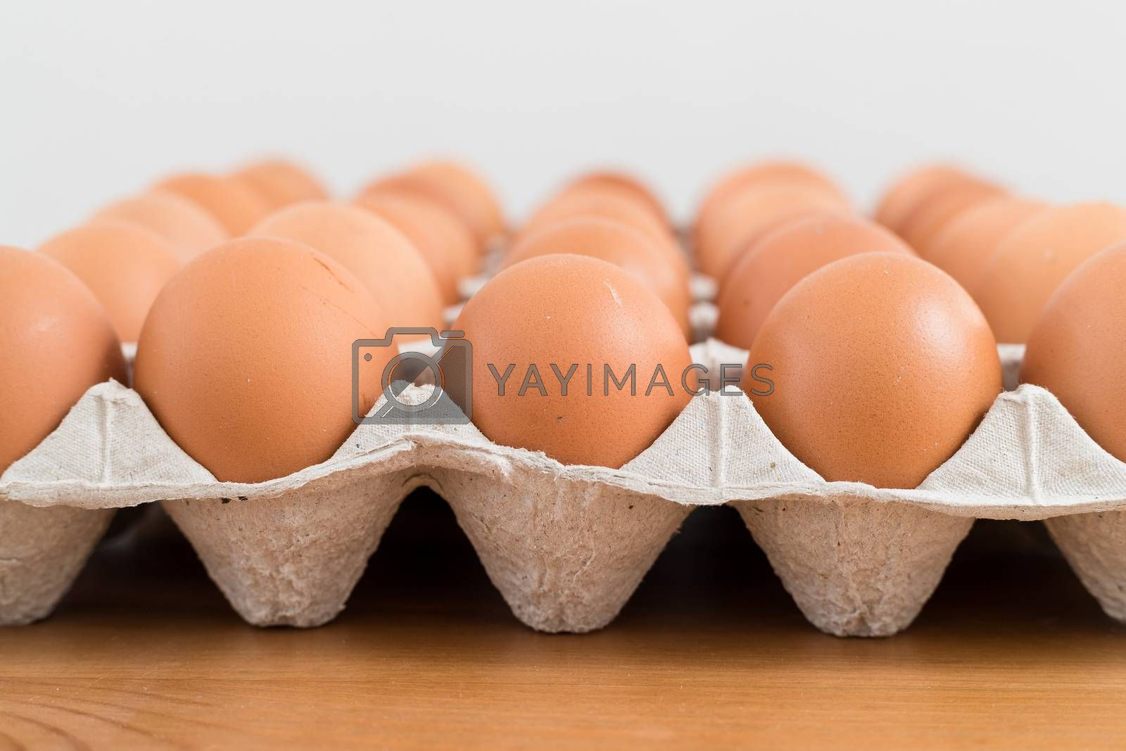 Royalty free image of Fresh chicken egg in package by leungchopan