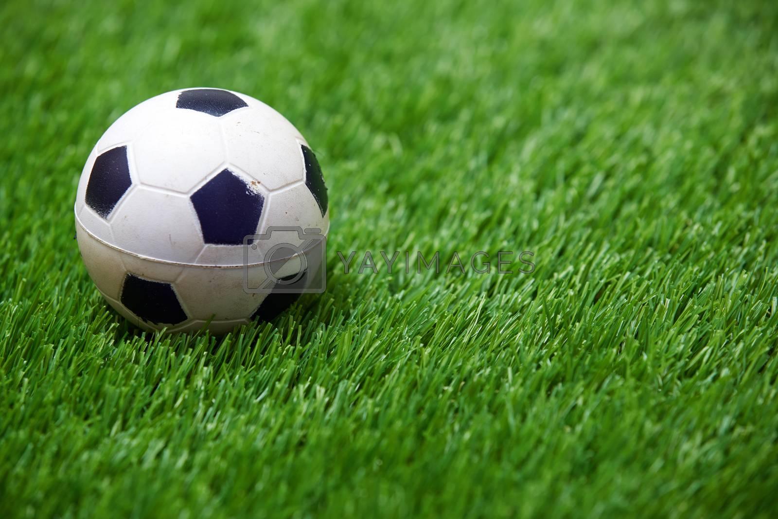 Soccer ball on a grass. Horizontal photo