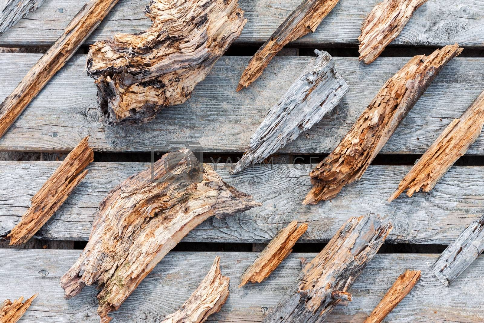 Old rotten wooden pieces and fragments well organized on wooden plank background, top view