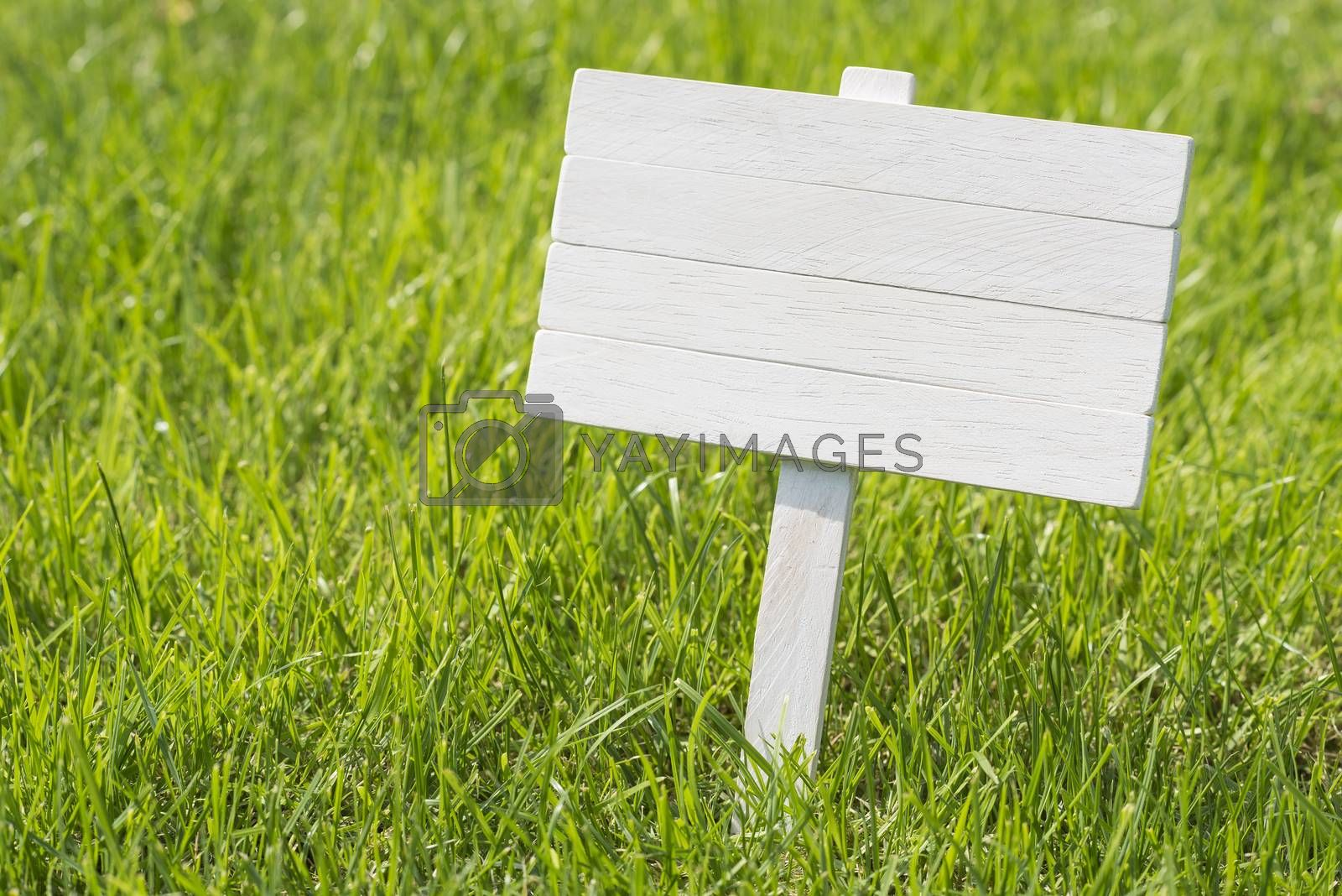 White wooden plate to place text in a sunny meadow