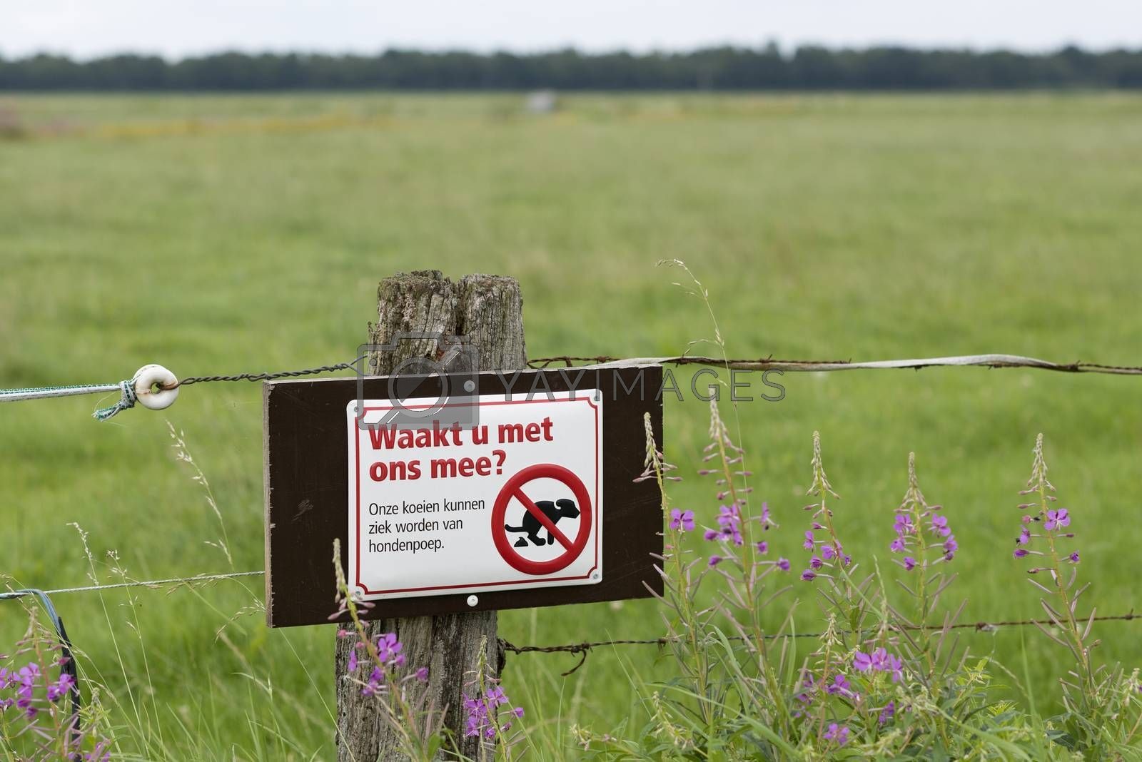 Join us watching? Sign against pathogenic dog poo near pasture for cows