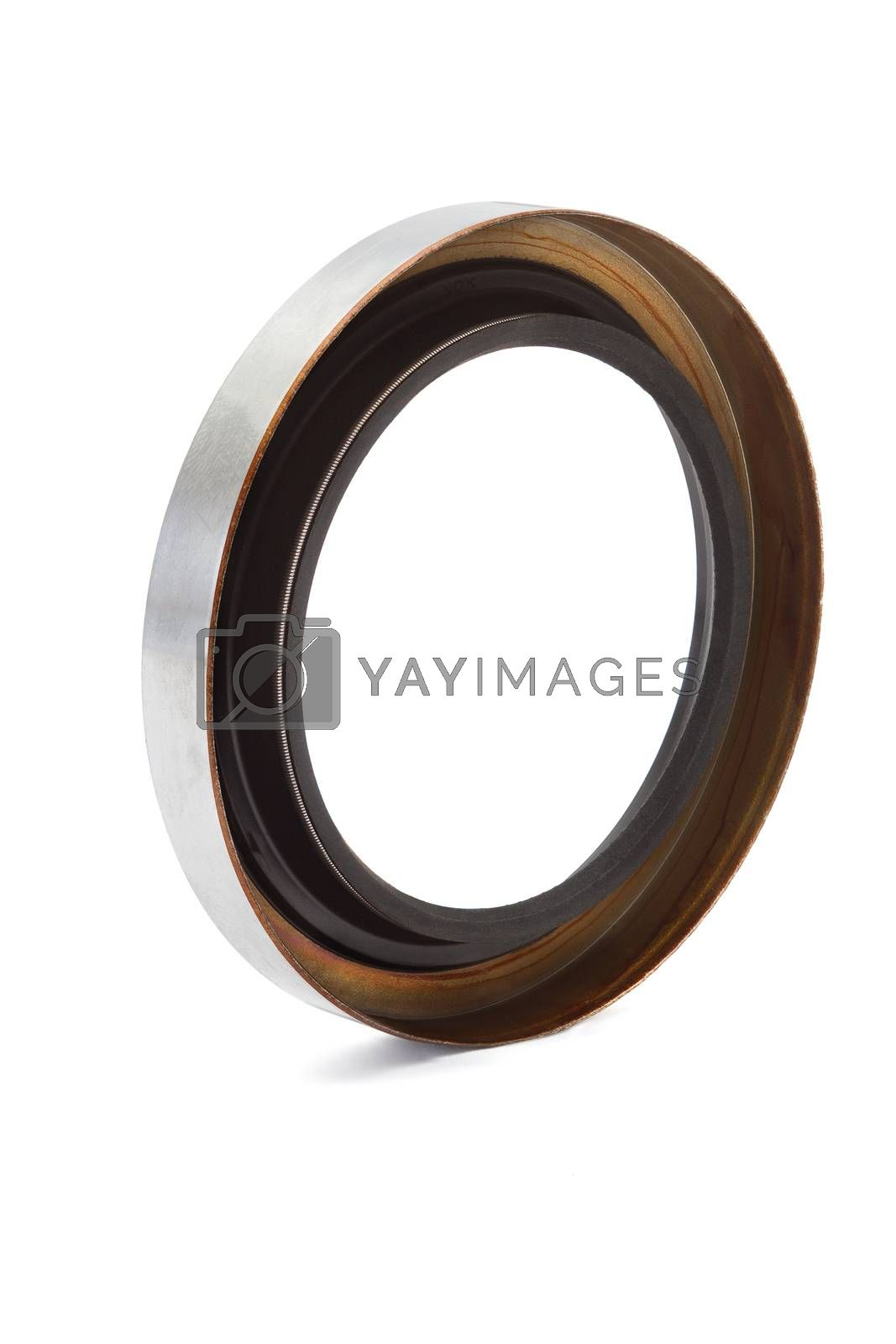 Oil seal isolated on white background