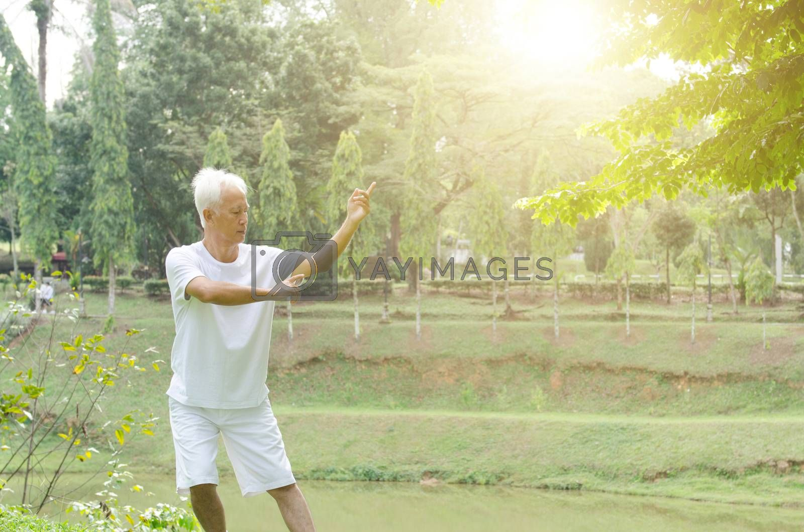 Portrait of healthy fitness grey hair Asian old man practicing kungfu at outdoor park in morning.